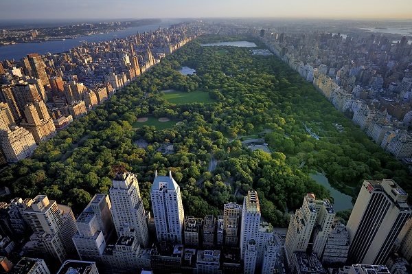 Central Park Walking Park aerial view
